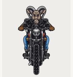 Ferocious goat head biker colorful concept vector