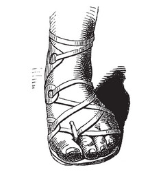 Mans sandal vintage engraving vector