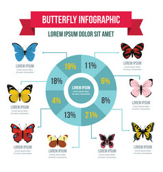 Butterfly infographic concept flat style vector