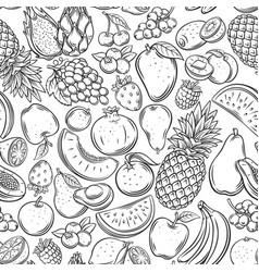 fruits and berries outline seamless pattern vector image