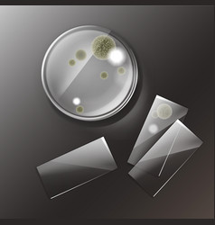 Petri dish with molds vector