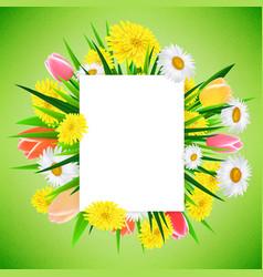 spring or summer banner background template vector image