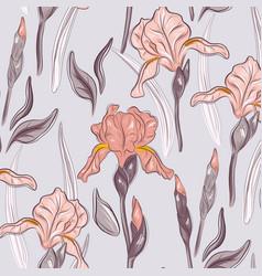 summer violet iris blossom hand drawn print vector image