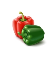 Two Colored Green Red Bulgarian Bell Peppers vector