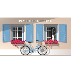 Windows and bicycle vector image