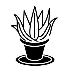 succulents aloe pot icon vector image