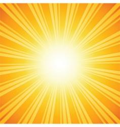 sunburst backgrounds vector image