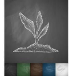 root-crop icon vector image