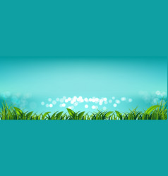sky with fresh green grass and light bokeh the vector image