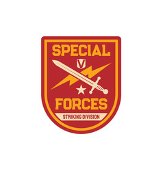 Special forces striking division chevron squadron vector