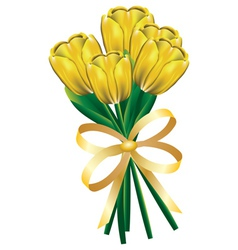 Tulip bouquet with bow3 vector image