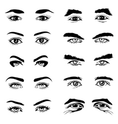 Male and female eyes eyebrows elements vector image vector image