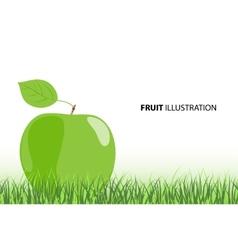 ripe apple vector image