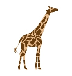 giraffe african isolated icon vector image
