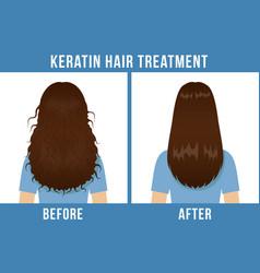 hair care keratin treatment vector image