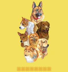 postcard with dogs different breeds-7 vector image