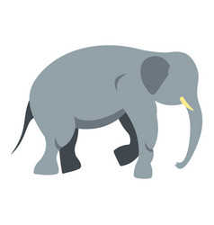 elephant icon isolated vector image