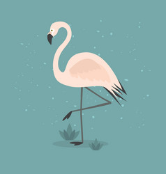 beautiful abstract single pink flamingo standing vector image
