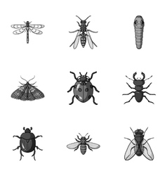Insects set icons in monochrome style Big vector image