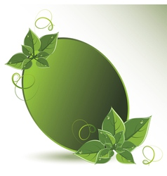 green leaves eco design vector image vector image