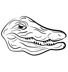 head of a crocodile crocodile sketch vector image