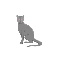 cat line icon vector image