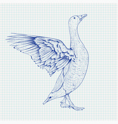 Goose sketch angry bird with lifted wings vector