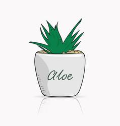 Hand drawn aloe vera in a pot vector