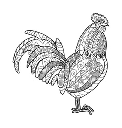 Rooster coloring book for adults vector image vector image