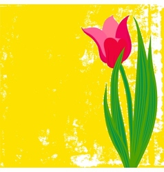 Card with red tulip on textured background vector