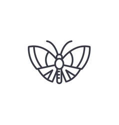 Butterfly line icon sign on vector