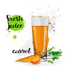 carrot juice fresh hand drawn watercolor vegetable vector image