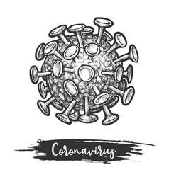sketch coronavirus cell microbe or bacteria vector image