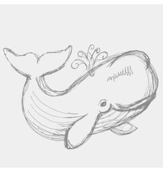 Whale animal vector image