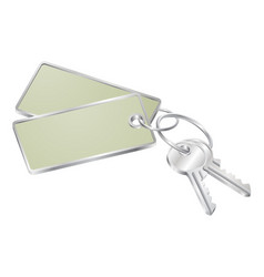 two keys with blank tag for text vector image vector image