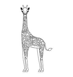 giraffe wild animal vector image