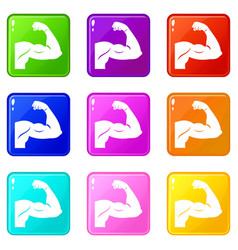 biceps set 9 vector image vector image