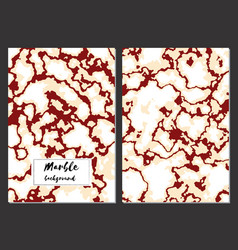 marble texture background card templates vector image