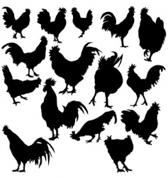 Rooster silhouettes vector