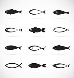 Set of fish icons on white background vector image
