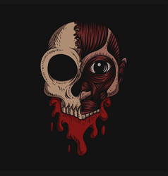 skull no skin blood vector image