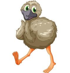 Emu cartoon vector image