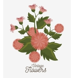 vintage flowers decoration icon vector image