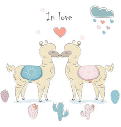 Cute alpaca couple vector