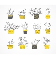 Cute hand drawn cactus set vector image