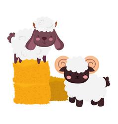 Farm animals sheep and goat stack hay cartoon vector