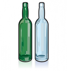 glass bottles vector image