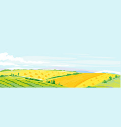 wheat fields panorama landscape background vector image