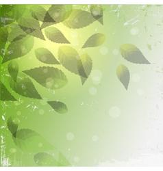 grunge leaf background vector image