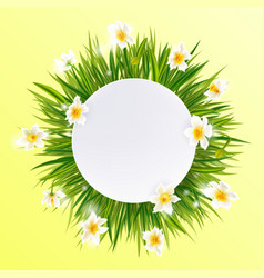 round natural frame with grass and flowers vector image vector image
